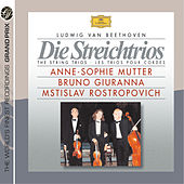 Beethoven: The String Trios de Anne-Sophie Mutter