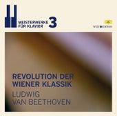 Welt Edition: 3. Revolution der Wiener Klassik von Various Artists