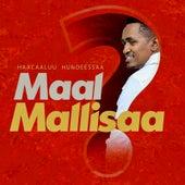 Maal Mallisaa by Haacaaluu Hundeessaa