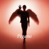 Pegasus by Tomoyasu Hotei