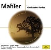 Mahler Orchesterlieder von Various Artists