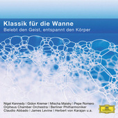 Musik für die Badewanne von Various Artists