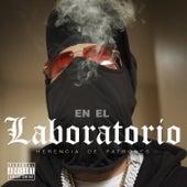 En El Laboratorio by Herencia de Patrones