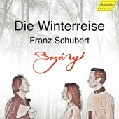 Schubert: Winterreise, Op. 89, D. 911 (Arr. for Oboe, Bassoon & Piano) by Clara Dent-Bóganyi