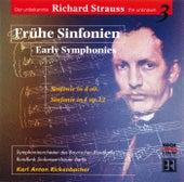 Frühe Sinfonien von Symphonie-Orchester des Bayerischen Rundfunks