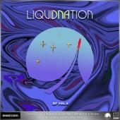 V/A LiquiDNAtion EP Vol.6 de Electrosoul System