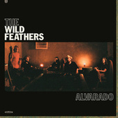 Side Street Shakedown by The Wild Feathers