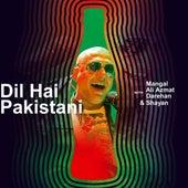 Dil Hai Pakistani (Coke Studio Season 11) von Ali Azmat