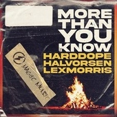 More Than You Know di Harddope