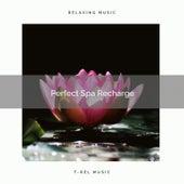 ! ! ! ! ! Perfect Spa Recharge de Massage Tribe