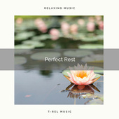 ! ! ! ! ! Perfect Rest de Massage Tribe