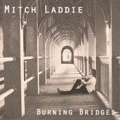 Burning Bridges by Mitch Laddie