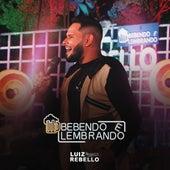 Bebendo e Lembrando (Ao Vivo) by Luiz Rebello