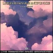 Vivid Dreams (Live) by Lindsey Buckingham