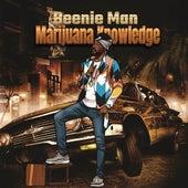 Marijuana Knowledge von Beenie Man