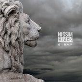 Gibor by Nissim Black