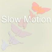 Slow Motion de Various Artists