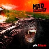 Sem Reação de Mad Monkees