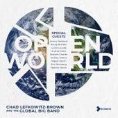 Open World von Chad Lefkowitz-Brown