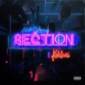 Section (feat. Kehlani) by Ant Clemons