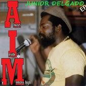 Aim High by Junior Delgado