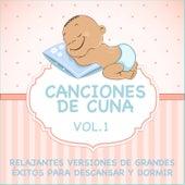 Canciones De Cuna - Relajantes Versiones De Grandes Éxitos Para Descansar Y Dormir, Vol. 1 by Sleeping Bunnies