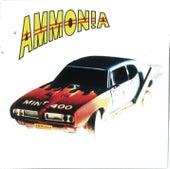 Mint 400 by Ammonia