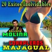 20 Exitos Inolvidables by Aniceto Molina