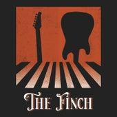 Stay von Finch
