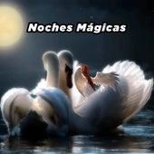 Noches Mágicas de Various Artists