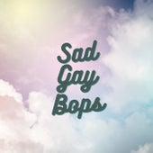 Sad Gay Bops de Various Artists