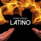Puro Fuego Latino de Various Artists