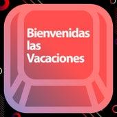 Bienvenidas las vacaciones de Various Artists
