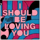 I Should Be Loving You de Armin Van Buuren