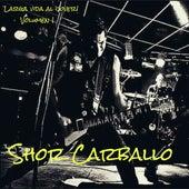 Larga Vida al Cover! Volumen 1 (Cover) de Shor Carballo