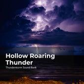 Hollow Roaring Thunder de Thunderstorm Sound Bank