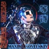 等待 by Maxim Novitskiy