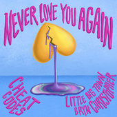Never Love You Again (with Little Big Town & Bryn Christopher) by Cheat Codes