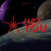 I Like You de Nrvs