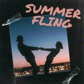 Summer Fling von Various Artists