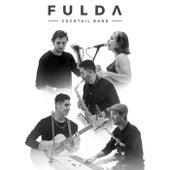 Live Session de Fulda Cocktail Band