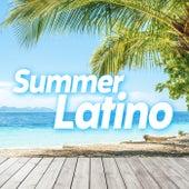 Summer Latino de Various Artists