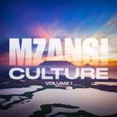 Mzanzi Culture: Vol 1 by Various Artists
