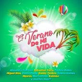 El Verano De Mi Vida de Various Artists