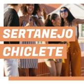 Sertanejo Chiclete de Various Artists