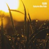 Rain: Autumn like Rain by S.P.A