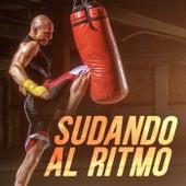 Sudando Al Ritmo by Various Artists