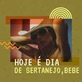 Hoje é dia de Sertanejo, Bebe de Various Artists