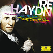 re:Haydn by Various Artists