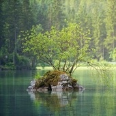 50 Soft Nature Sounds for Deep Relaxation by Classical Lullabies